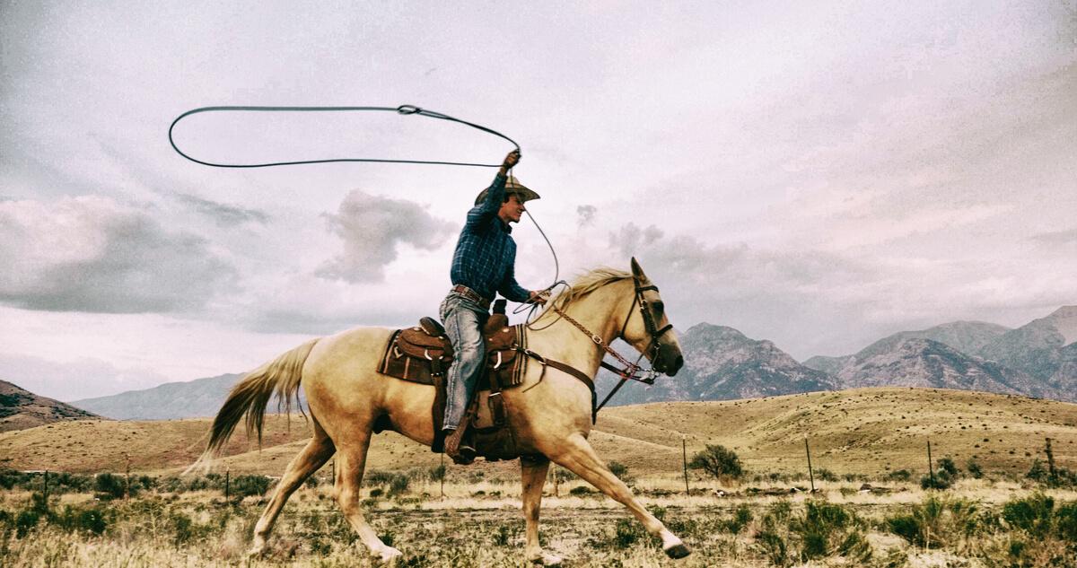 acessórios para cavalo